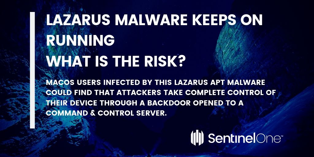 image of lazarus risks