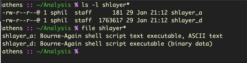 image of shlayer_d file type